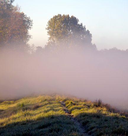 Vor und hinter der Nebelwand eine Welt mit Respekt